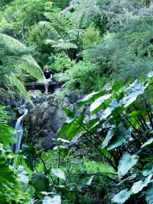 Wasserfall in den Quarry Gardens