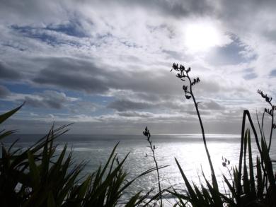 Blick auf die Tasmansee