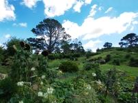 Blick aus dem Tal auf Beutelsend