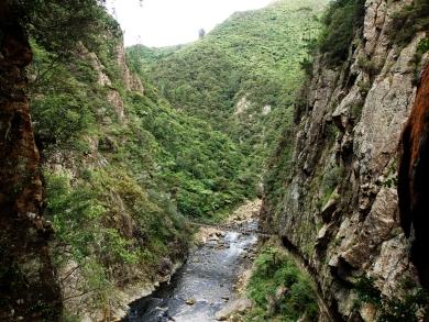Blick aus einem der Fenster in die Karangahake Gorge
