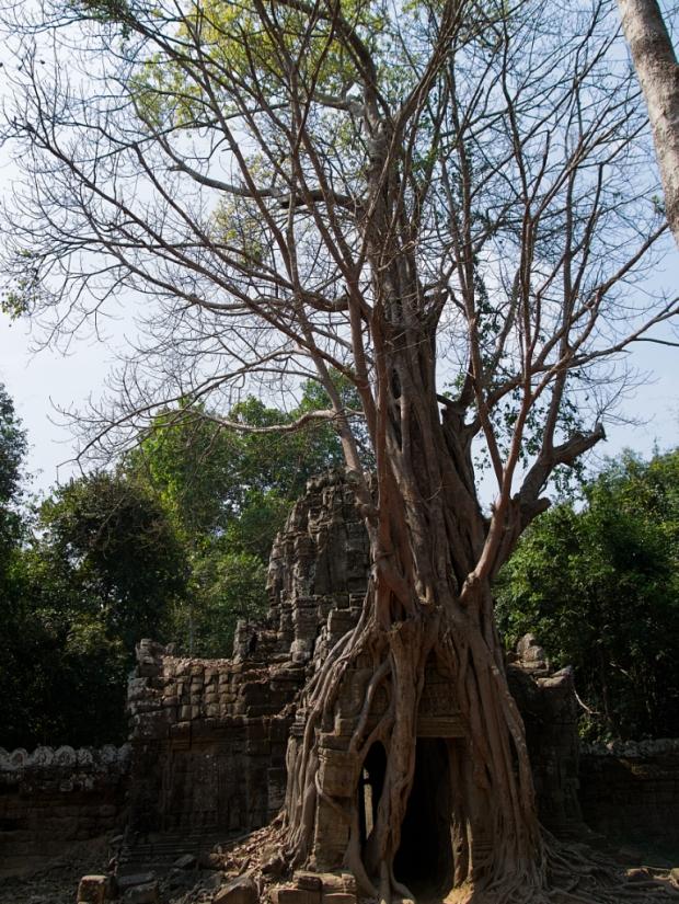 Angkor_TaSomEastGate