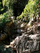 Weg zur Pha Tao Höhle