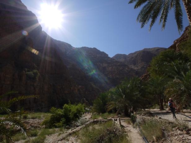 Palmen und Gräser lassen das Wadi ergrünen