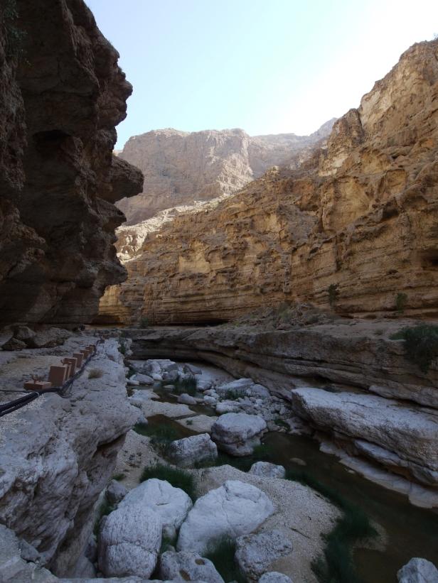 Vegetation wechselt sich mit kargen Felsen ab