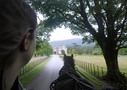 Die Kutschfahrt nach dem Ring of Kerry rettet den verregneten Tag.