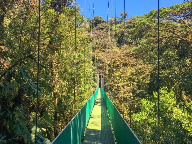 Monteverde_HangingBridges